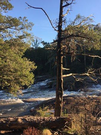 High Falls State Park Φωτογραφία