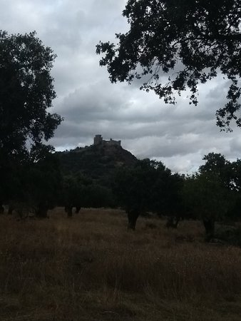 Burguillos del Cerro, Spania: Dehesa