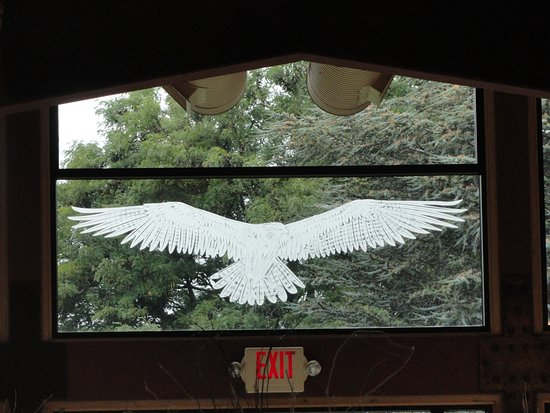 Peconic, NY: That poor bird that hit the window and left its ghost image....
