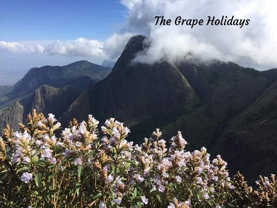 The Grape Adventures & Holidays