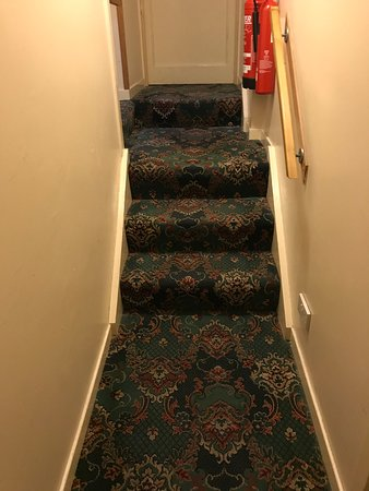 The Star Hotel: Snazzy carpets