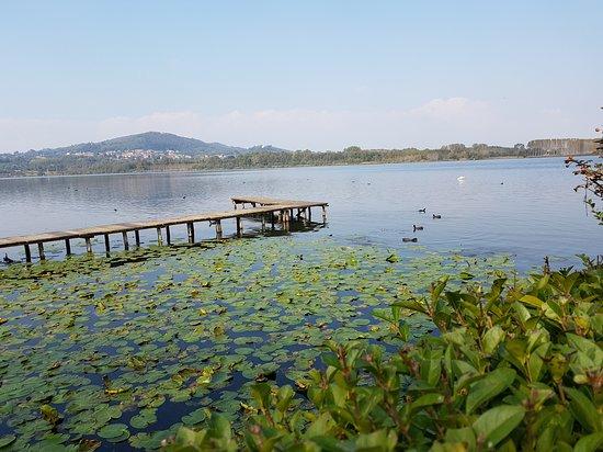 Mazze, Italy: Spettacolo della natura