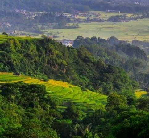 Ciamis, Indonesien: These summit are located between Mount Sawal and Mount Cakrabuana. Potentially views of pines at