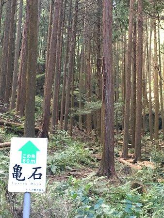 Atsugi, Japan: 七沢 パワースポット 亀石