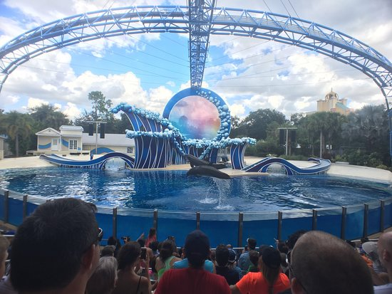SeaWorld Orlando: photo5.jpg