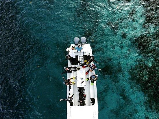 Long Caye, Belize: Blue Hole Dive..