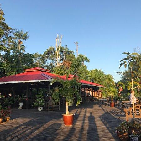 Kinabatangan District, Malaysia: photo5.jpg