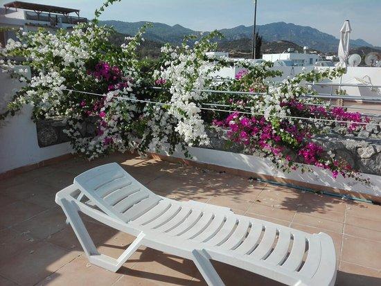 Bahceli, Cipro: IMG_20181005_093713_large.jpg