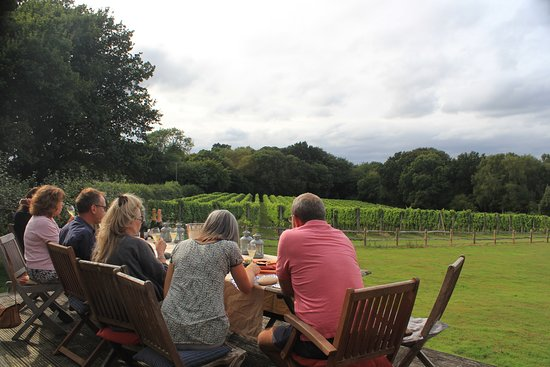 Vine and Country Tours: Afternoon on the decking