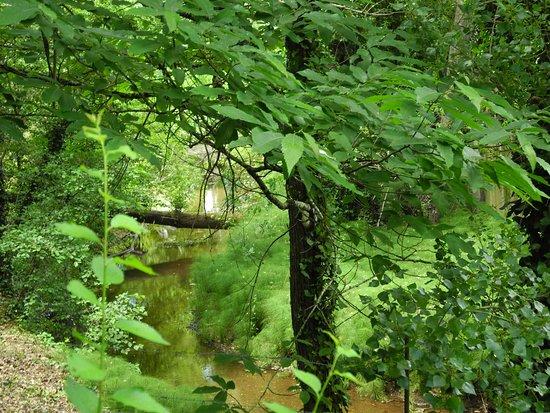 """Sierra de Aracena and Picos de Aroche Natural Park, Spain: Paseo en Naturaleza. Ruta """"Entre colmenas"""""""