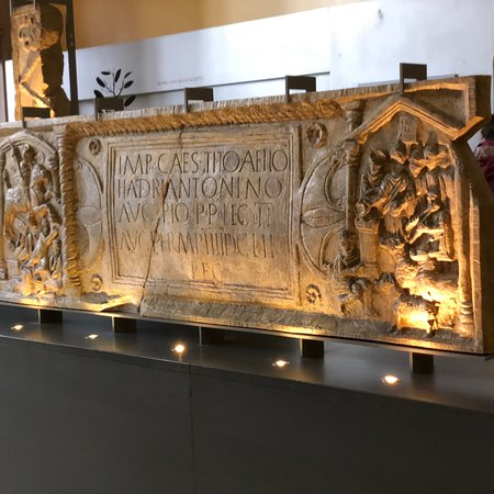 Hunterian Museum (Glasgow) - 2018 All You Need to Know Before You Go ...