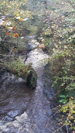 Coelbren, UK: 20181013_142516_large.jpg