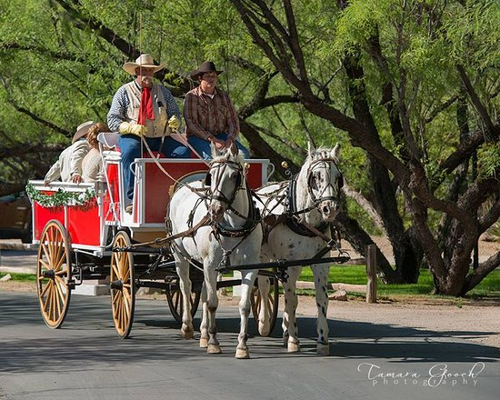 Arizona Horse Carriage & Wagon