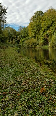 Lifton, UK: Beautiful quarry on the grounds