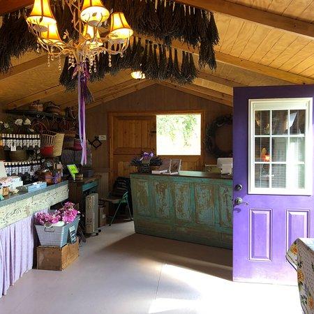 Purple Adobe Lavender Farm: photo2.jpg