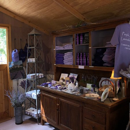 Purple Adobe Lavender Farm: photo6.jpg