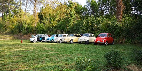 Self-Drive Vintage Fiat 500 Tour from Florence: Tuscan Wine Experience Resmi