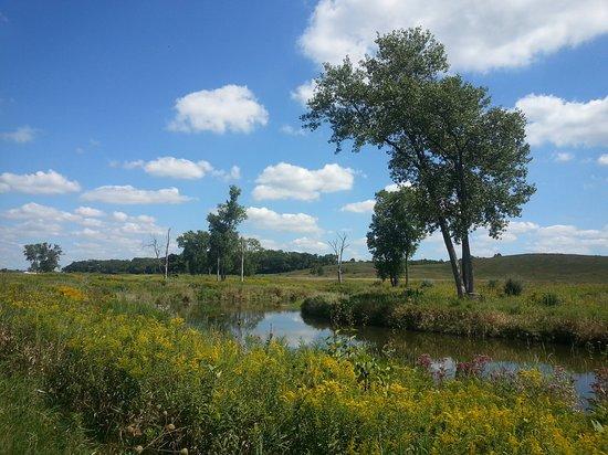Wonder Lake, Илинойс: River in summer