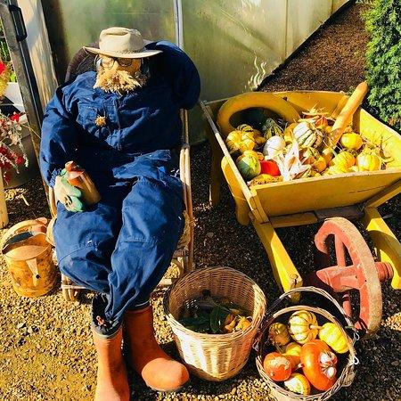Parham House & Gardens: Getting ready for Halloween