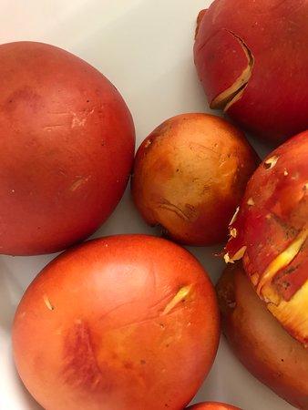 Castenaso, Italia: Ovoli