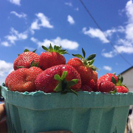 Monmouth Junction, NJ: Von Thun's ever-popular strawberries!