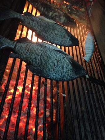 Itaituba: Os peixes no braseiro