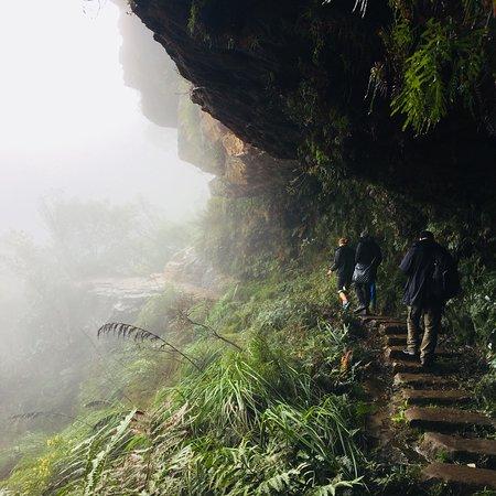 Wentworth Falls-bild