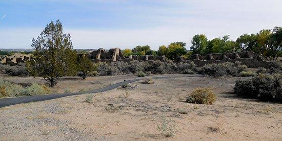 Aztec, NM: Ruins-10-Panorama
