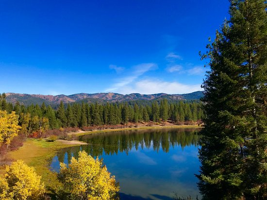 Newport, Waszyngton: view of Pend Oreille River and foliage from the train