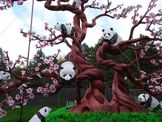 Boerner Botanical Gardens: Pandas which flowers changing color