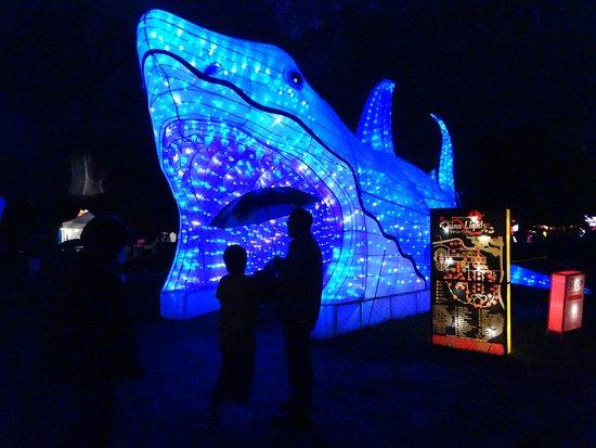 Hales Corners, WI: The blue whale