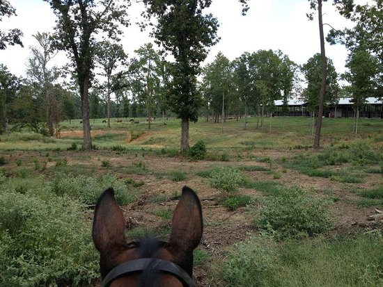 Edgebrook Equestrian Center