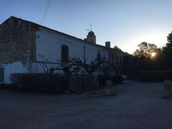 Domaine De La Tour Du Cazeau Photo