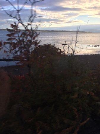 Train de Charlevoix: View