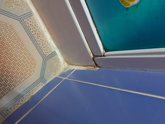 Anse Kerlan Beach: Dusche