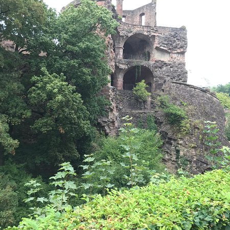 Heidelberg Castle (Schloss Heidelberg): photo8.jpg