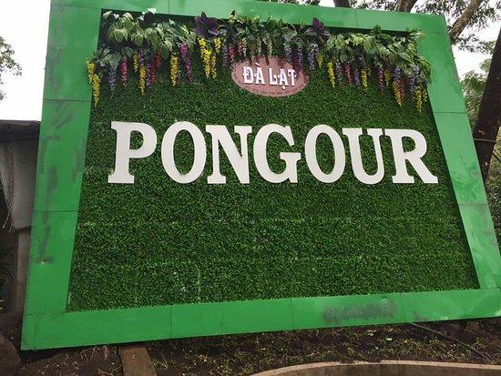 Pongour Falls: FB_IMG_1539654259021_large.jpg
