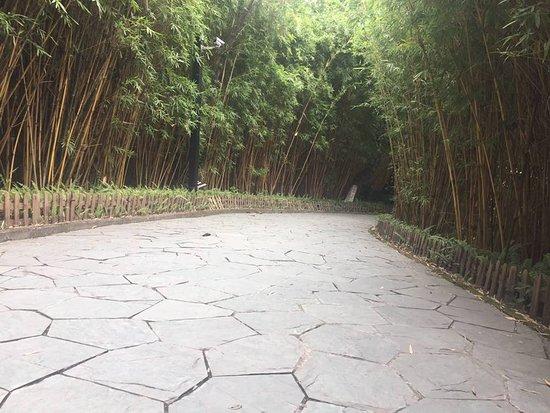 Dongguang County, Chiny: Keyuan garden