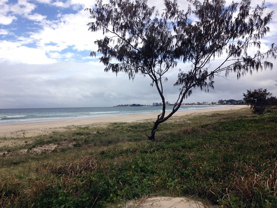 Tugun Beach: Tugan Beach near the entrance pathway. (Coolangatta in the distance)