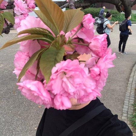สวนอุเอโนะ: photo1.jpg