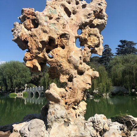 The Huntington Library, Art Collections and Botanical Gardens: Expansive Botanic Garden an hour north of LA in San Marino — well worth a visit! The bonzai gard