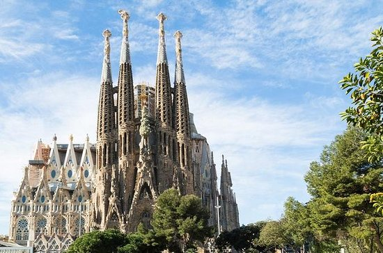Barcellona da solo con autista inglese