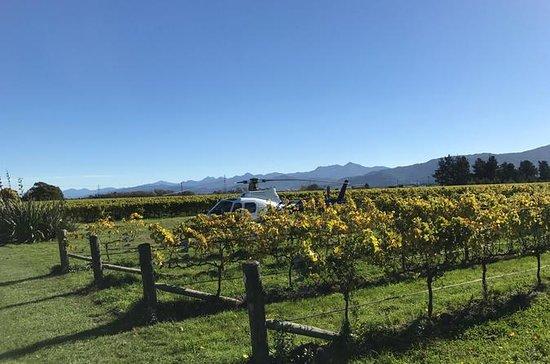 Marlborough Vineyard Discoverer