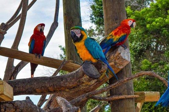 Aviario nasjonalpark delt tur