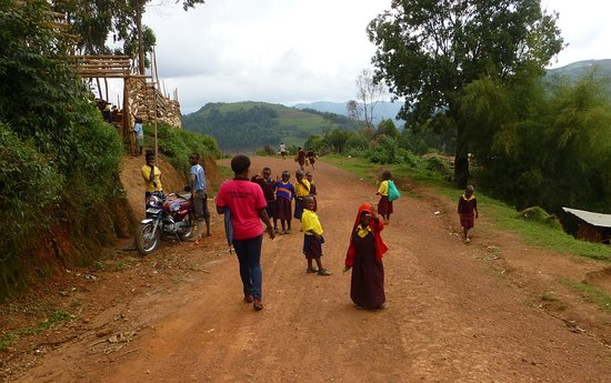 Masindi, Uganda: Bwindi