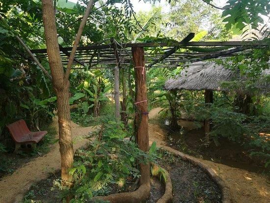 Sisophon, Cambodia: Permaculture garden