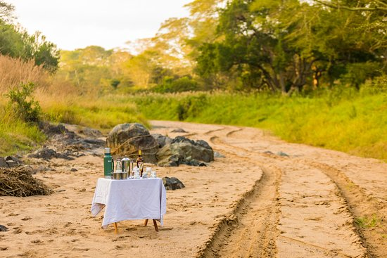 Landscape - Picture of Rhino Sands Safari Camp, Manyoni Private Game Reserve - Tripadvisor