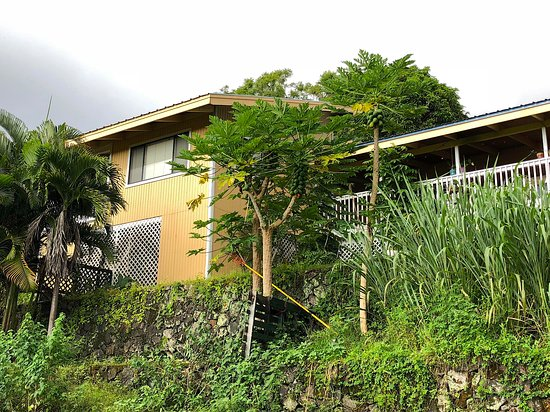 Hale Hualalai Bed and Breakfast: one of the 2 apartments