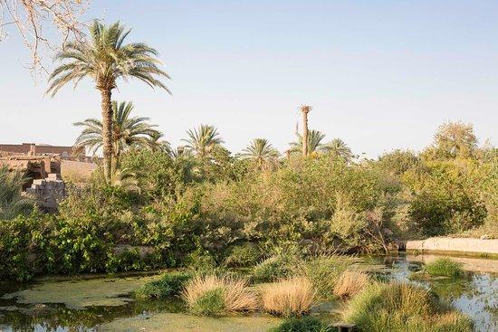 Mesr Village, Mesr Desert, Iran, Pazirik Ecolodge. Aroosan, the desert lost jewel.