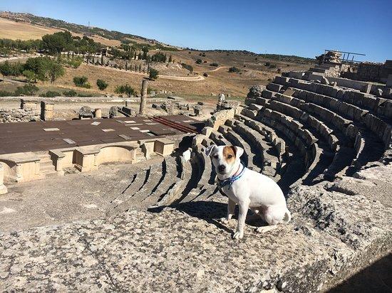 Saelices, España: teatro romano